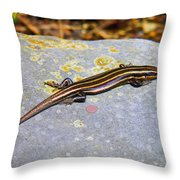 Five Lined Skink Throw Pillow