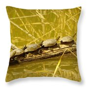 Five Turtles On A Log Throw Pillow