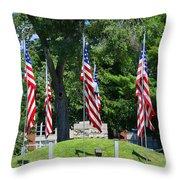 Flag - Illinois Veterans Home - Luther Fine Art Throw Pillow