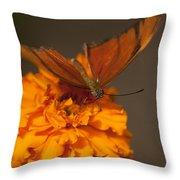 Flambeau Butterfly Throw Pillow