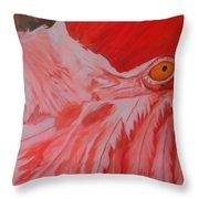 Flamboyant, Flamingo   Throw Pillow