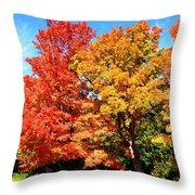 Flamboyant Autumn Throw Pillow