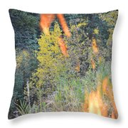 Flame Colored Fall.  Throw Pillow