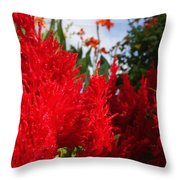 Flaming Feathered Flower Power Throw Pillow