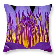 Flaming Heart Throw Pillow by Susan Candelario