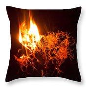 Flaming Seedheads Throw Pillow