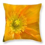 Flaming Yellow Poppy  Throw Pillow