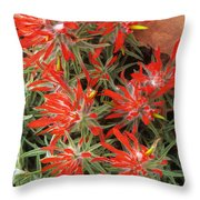 Flaming Zion Paintbrush Wildflowers Throw Pillow