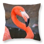 Flamingo Close Up Throw Pillow
