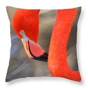 Flamingo Curves Throw Pillow