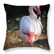 Flamingo In Fuchsia Throw Pillow