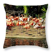 Flamingo Family Reunion Throw Pillow by Karen Wiles