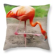 Flamingo Four Throw Pillow