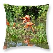 Flamingo Island Throw Pillow