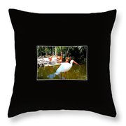 Flamingo Park Florida Throw Pillow
