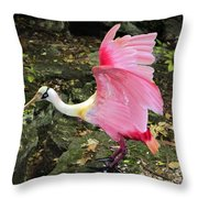 Roseate Spoonbil Throw Pillow