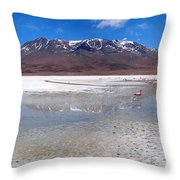 Flamingos At The Altiplano In A Salt Lake Throw Pillow