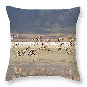 Flamingos Flying Over Water Throw Pillow