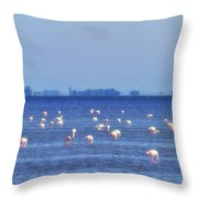Flamingos In The Pond Throw Pillow