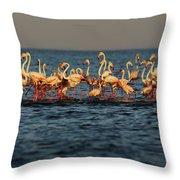 Flamingos On Lake Turkana Outside Elyse Throw Pillow