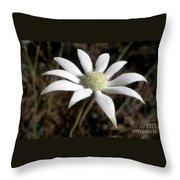 Flannel Flower Throw Pillow