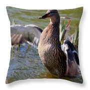 Flap Those Wings Throw Pillow