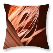 Flash Flood Art Throw Pillow