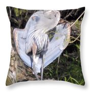 Flasher In The Park Throw Pillow
