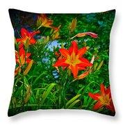 Flashes Of Garden Fire Throw Pillow