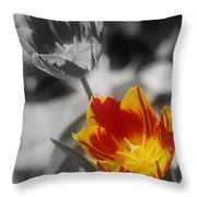 Flashy Tulips Throw Pillow