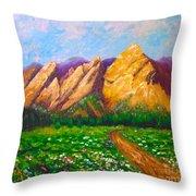 Flat Iron Colorado Throw Pillow