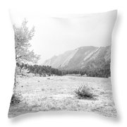 Flatirons Tree - Winter Throw Pillow