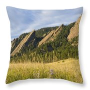 Flatirons With A Purple Wildflower  Throw Pillow