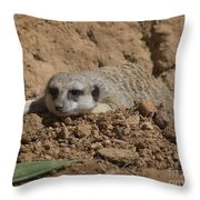 Flatout Throw Pillow
