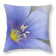 Blue Flax Close-up Throw Pillow