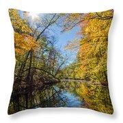 Fleeting Fall  Throw Pillow