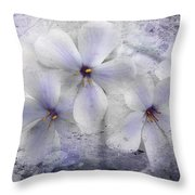 Fleeting Visions Throw Pillow
