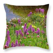 Fleeting Wonder Throw Pillow
