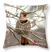 Flicker - Alabama State Bird - Attention Throw Pillow