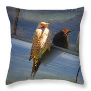 Yellow Shafted Northern Flicker Hanging Around Throw Pillow