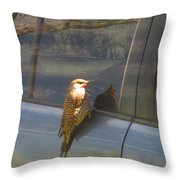 Flicker Looking At His Reflection Throw Pillow