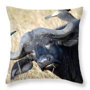 Flicking The Bird Throw Pillow