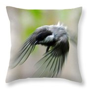 Flight II Throw Pillow