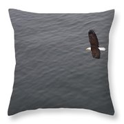 Flight Throw Pillow by Joanna Madloch