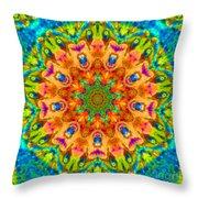 Flight Mandala Throw Pillow