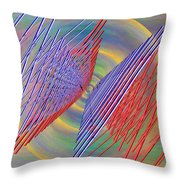 Flight Of The Albatross Throw Pillow