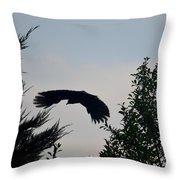 Flight Of The Black Crow Throw Pillow