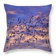 Flight Of The Blackbirds Throw Pillow
