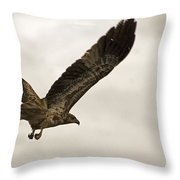 Flight Of The Brown Kite V7 Throw Pillow