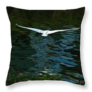 Flight Of The Egret Throw Pillow